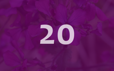 Lunaria celebrated the 20th anniversary of developing drugs together!